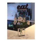 eat-cafe-pranzo-scottsdale-az